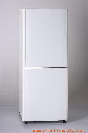 refrigerator mould