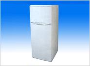 fridge mould
