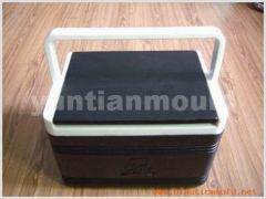 Cool Box Mould