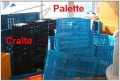 crate mould&pallet mould