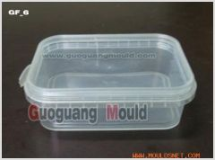 F-6 square box _thin wall mould_container mould