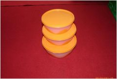 two color container  mould