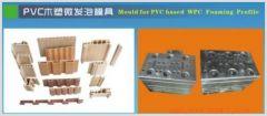 WPC Foaming Decoration Moulds