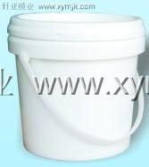 plastic paint bucket mould/bucket mould