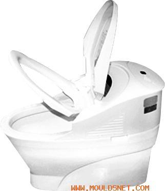 Toilet Seat Mold