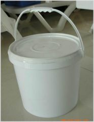 paint bucket mould and product