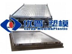 SMC tray mould