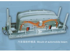 Mould of automobile beam