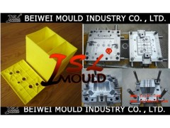 battery case mould