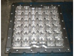 Egg Tray Injection Mould