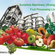 Sunshine Machinery (Shanghai) Co., Ltd.  Logo